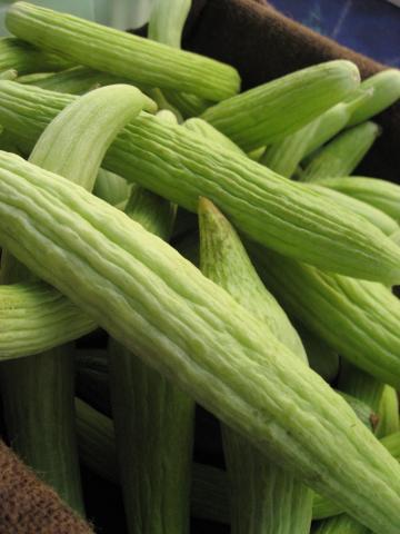 Armenian Cucumbers