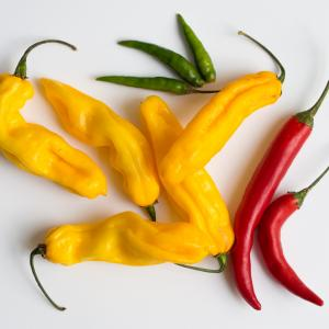 Peppers, Red Chili Peppers