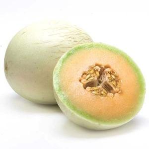 Honeydew (orange flesh)